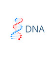 dna strand symbol dna genetics vector image