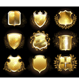 Set of Golden Shields vector image vector image