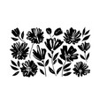 spring flowers hand drawn set vector image