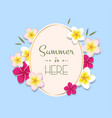 summer with frame and flowers vector image vector image