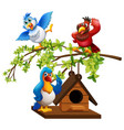 three parrots flying around birdhouse vector image vector image