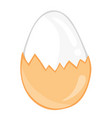boiled eggs isolated vector image