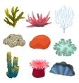different kind cartoon underwater plants and vector image