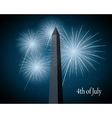 displays of fireworks vector image