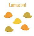 Lumaconi pasta vector image vector image