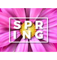 spring with beautiful colorful vector image