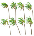 tropical palm trees on wind storm vector image vector image