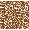 pattern of animal print vector image