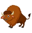 Bison cartoon vector image vector image
