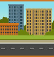 city street with road and city buildings summer vector image vector image
