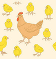 pattern with chickens vector image vector image