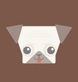 pug face vector image