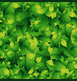 seamless background design with green leaves vector image