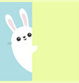 white bunny rabbit holding green wall signboard vector image vector image