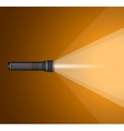 beam of light from flashlight Black metal vector image vector image