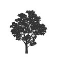 black silhouette tree forest plant vector image vector image