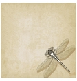 dragonfly insect old background vector image