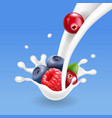 forest mixed berries fruit in yogurt or milk vector image vector image