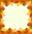 frame from autumn leaves vector image vector image