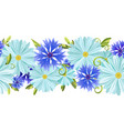 horizontal background with daisies and cornflower vector image