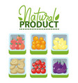 natural product market with fruits and veggies vector image