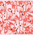 pink flamingo background floral pattern vector image vector image