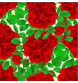 seamless texture red rose with buds vector image