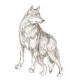 wolf sketch icon vector image vector image