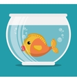 aquarium pet shop icon vector image vector image