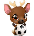 beautiful cute deer vector image vector image