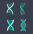 dna chain variations of bright turquoise color set vector image vector image