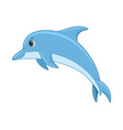 dolphin fish on a white background vector image vector image