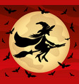 witch on the background of the moon vector image
