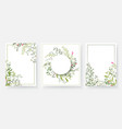 invitation cards with floral and branches wreath vector image vector image