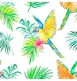 Macaw seamless pattern Transparent background vector image vector image