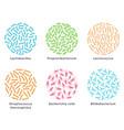probiotic bacteria good microorganisms vector image
