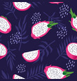 summer pattern with dragon fruit pitaya flowers vector image
