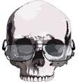 skull in glasses for reading vector image