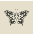 black butterfly machaon vector image