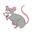 cartoon opossum rodent isolated on white vector image vector image