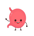 cute strong healthy happy stomach vector image vector image