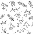 floral seamless pattern hand drawn plants vector image