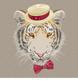 hipster amur tiger vector image