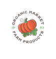 organic market logo pumpkin vegetarian vector image