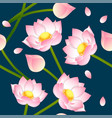 pink indian lotus on indigo blue background vector image vector image