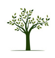 shape green tree with leaves vector image