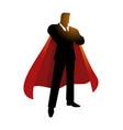 silhouette a super businessman vector image