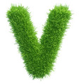 Small grass letter v on white background