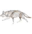 wolf running sketch icon vector image vector image