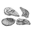 bird angel wings set sketch engraving vector image
